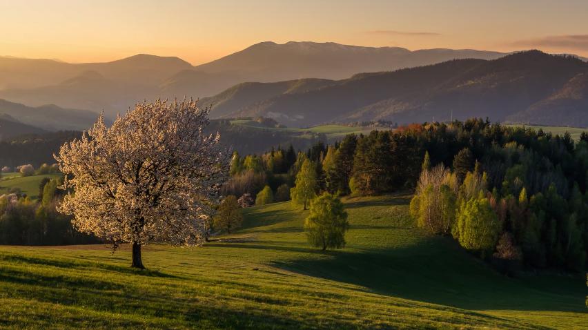 Somewhere in Slovakia 2 (Matúš Lašan - MLandscapes)